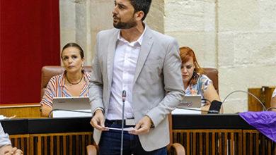 Photo of Adelante pide activar un plan que garantice el acceso a alimentos y productos básicos en zonas desfavorecidas de Sevilla