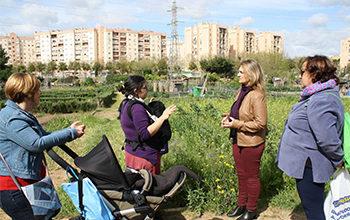 Photo of Adelante reclama al gobierno municipal que permita el acceso a los huertos urbanos para recolectar y para realizar labores de mantenimiento