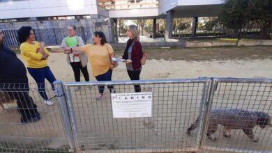 """Photo of Adelante alerta del mal estado de la zona de esparcimiento canino ubicada junto al edificio CREA, """"que pone en peligro la salud tanto de animales como de personas"""""""